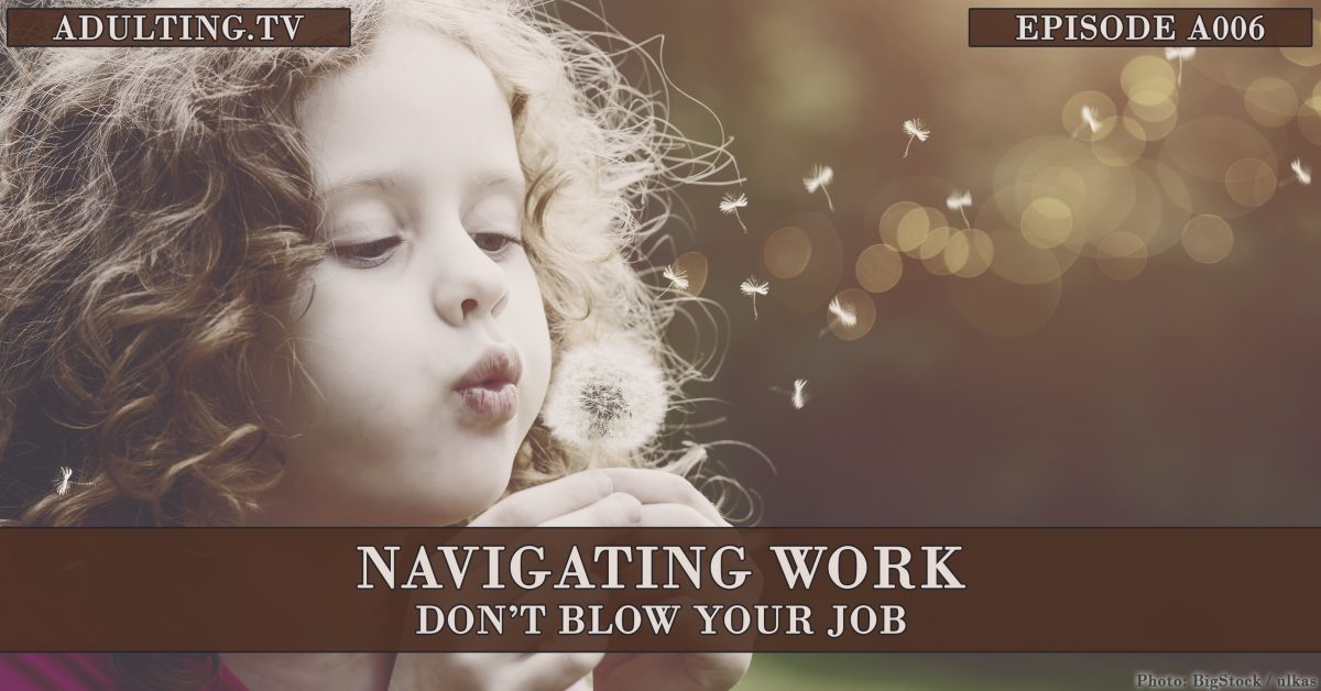 [A006] Navigating Work: Don't Blow Your Job