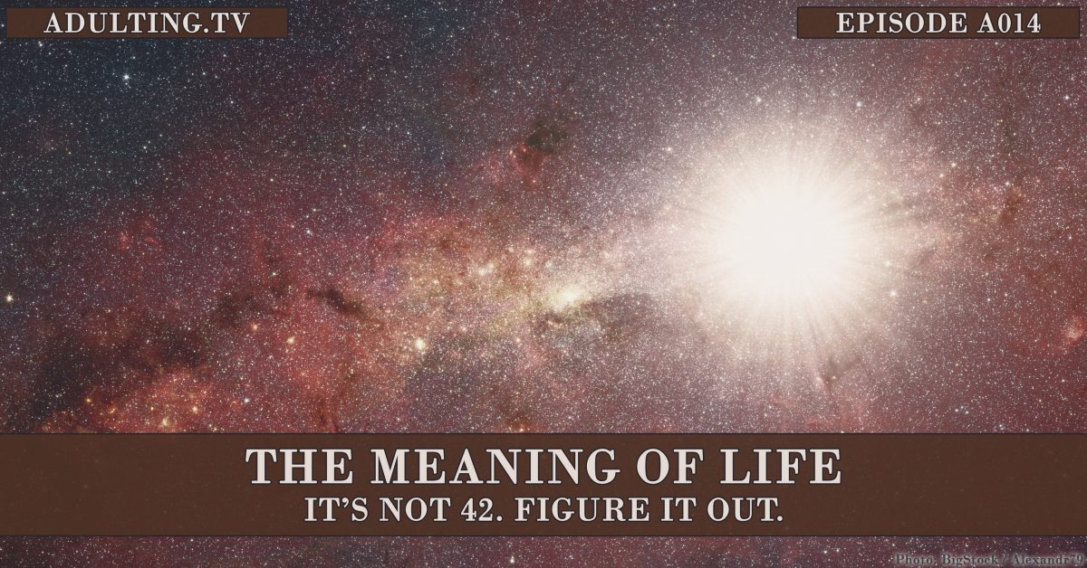 [A014] The Meaning of Life: It's Not 42. Figure It Out.