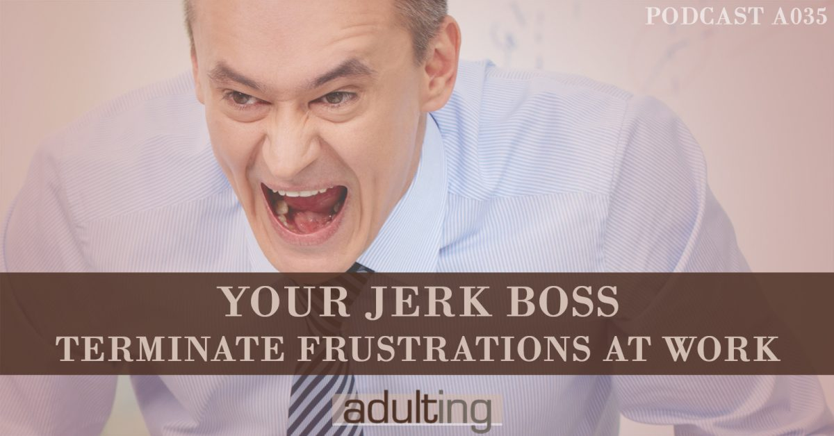 [A035] Your Jerk Boss: Terminate Frustrations at Work