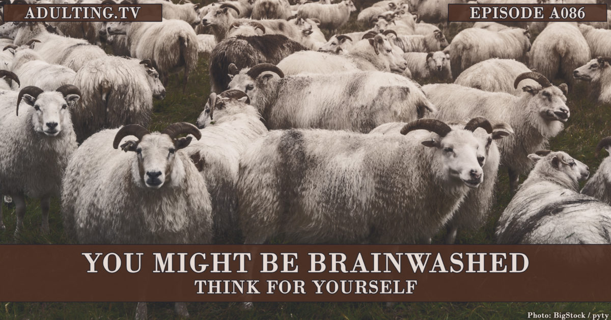[A086] You Might Be Brainwashed: Think for Yourself