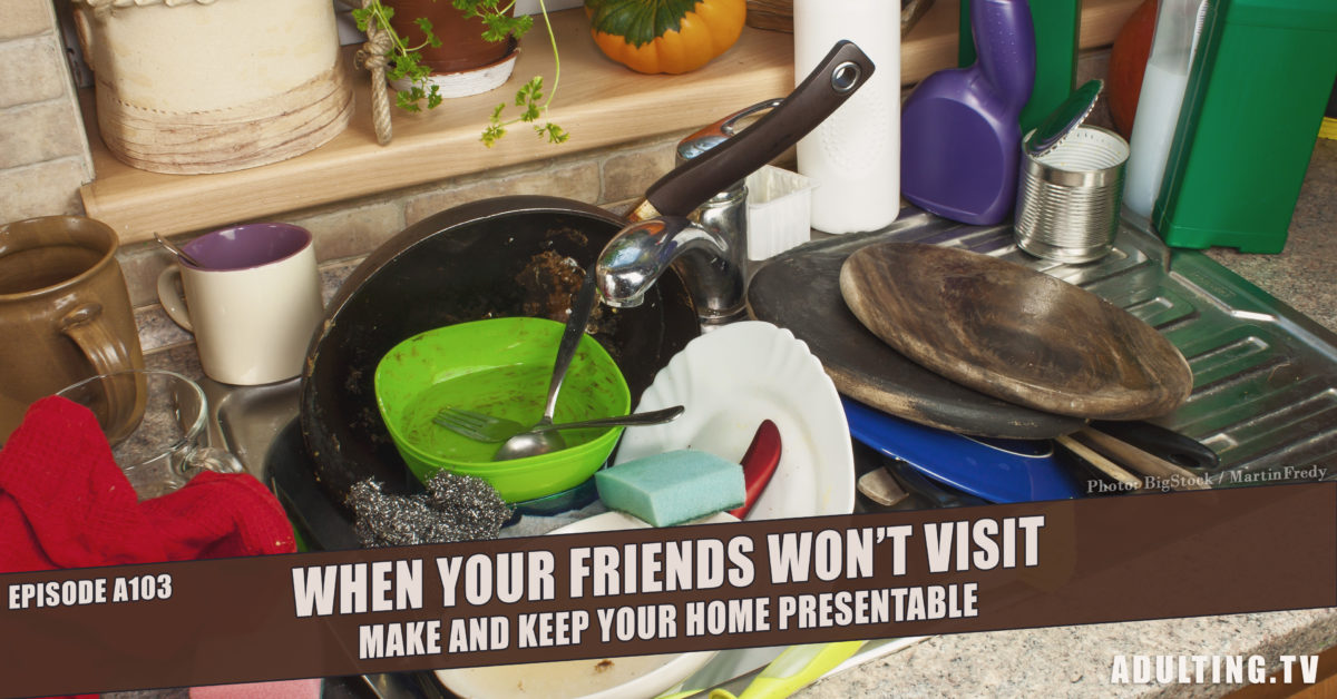 [A103] When Your Friends Won't Visit: Make and Keep Your Home Presentable