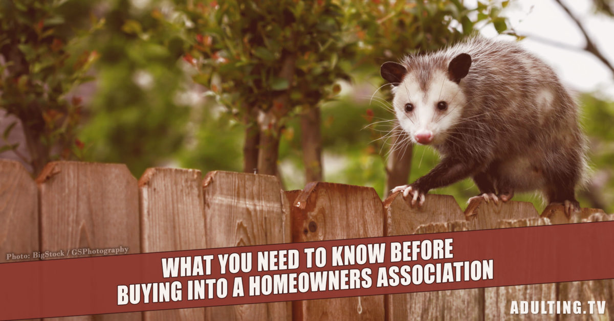 What You Need to Know Before Buying Into a Homeowners Association